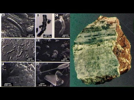 ALH 84001 el Meteorito que Reveló al Mundo la Presencia de Vida en Marte