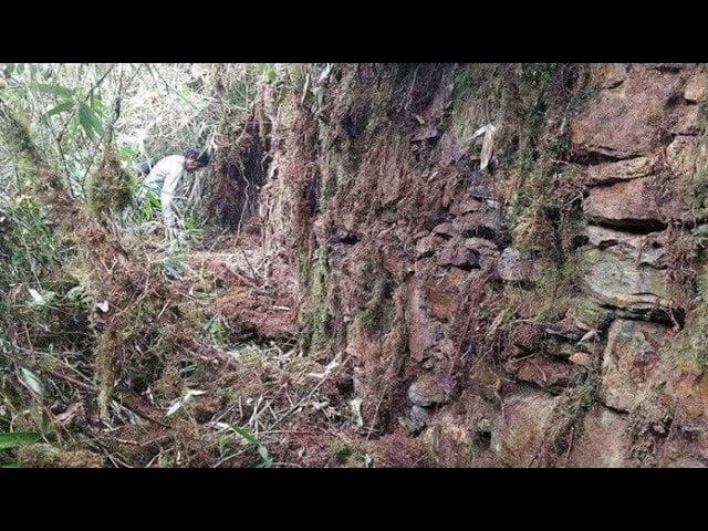 Descubren una «ciudad perdida» del Imperio inca en medio de la jungla peruana