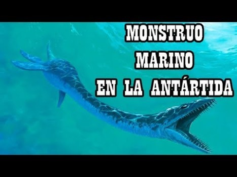Hallados Restos de Monstruo Marino Similar al del Lago Ness en la Antártida