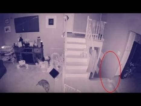 Captan en Vídeo el FANTASMA de un Niño y su Mascota Deambulando por su Casa