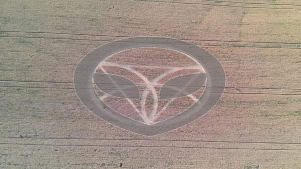 ¿Quién hizo este círculo de cultivo encontrado en Ipuaçu, Brasil? 28 de octubre 2020