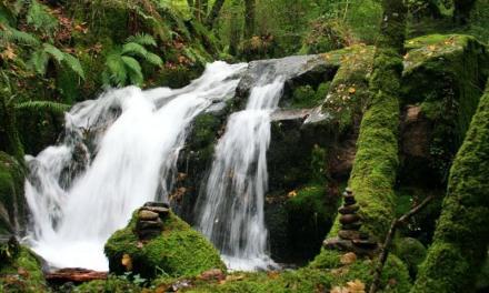 La naturaleza nos habla   Madre Naturaleza