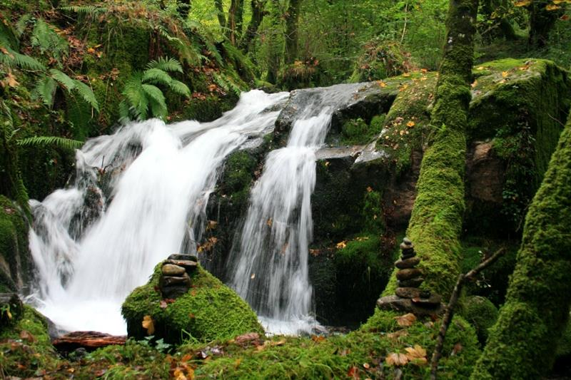 La naturaleza nos habla | Madre Naturaleza