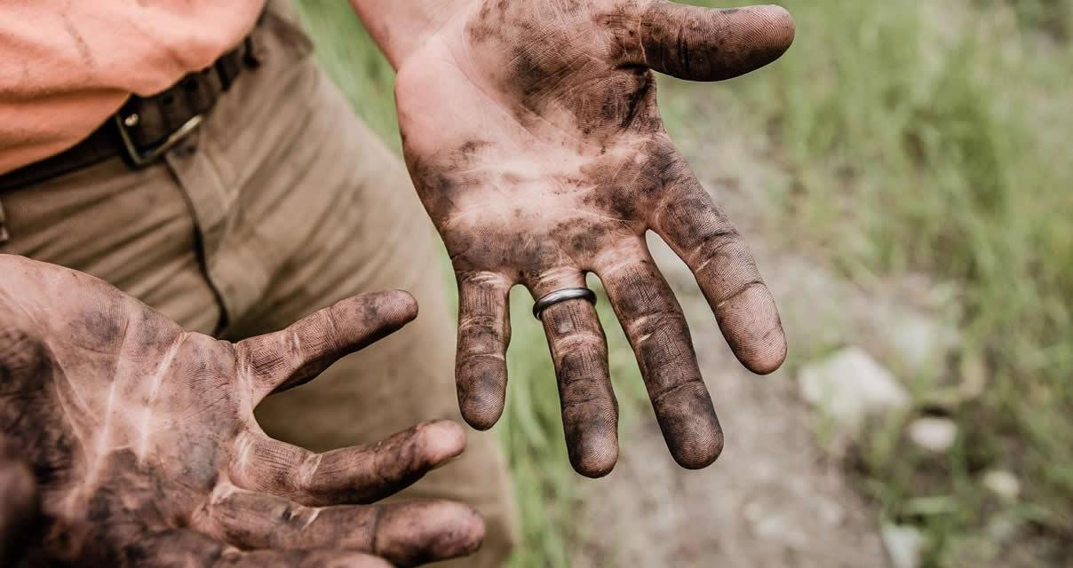 Identifican una bacteria derivada del suelo con propiedades inmunorreguladoras y resistencia al estrés