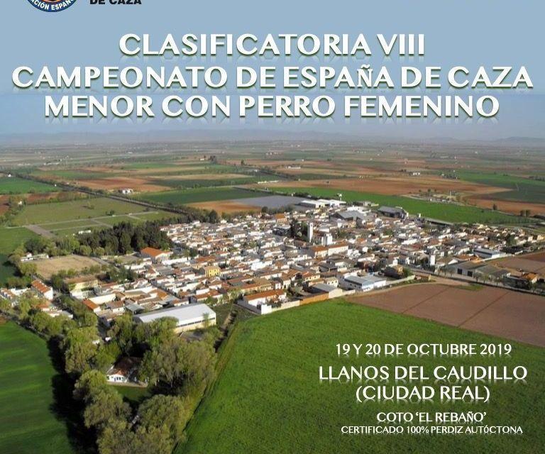 La clasificatoria para el VIII Campeonato de España de Caza Menor con Perro Femenino, el 19 y 20 de octubre en Llanos de Caudillo