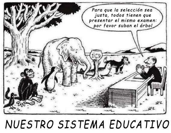 Porque el sistema educativo no funciona
