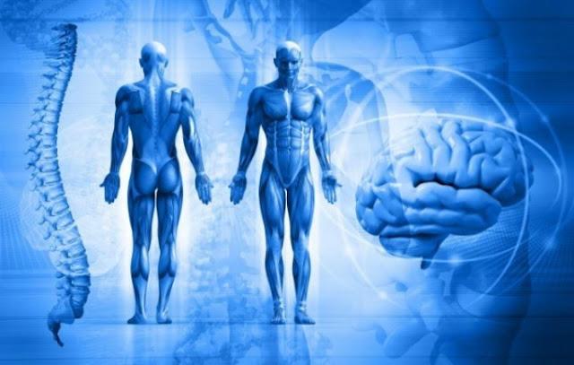 Científicos descubren que el cuerpo humano es una proyección de la consciencia