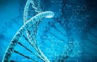 Otro punto más para la Panspermia: El ADN sobrevive en el espacio