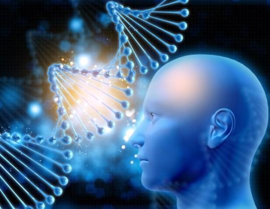 human head looking dna 1048 23301 - ¿Fue el ARCA de NOÉ un banco de ADN para los DIOSES INSTRUCTORES ETs?