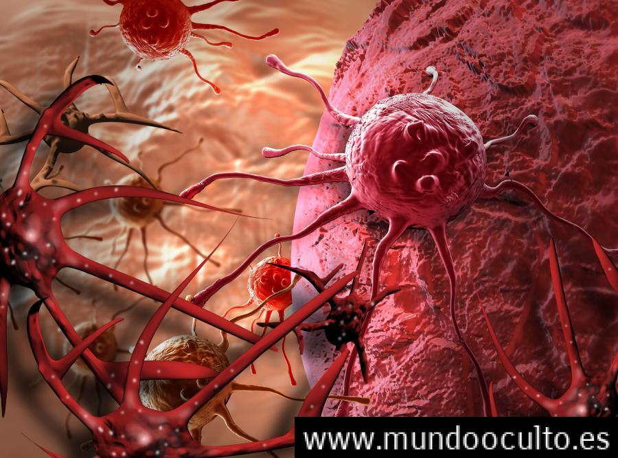 LA VERDADERA CAUSA DEL CANCER