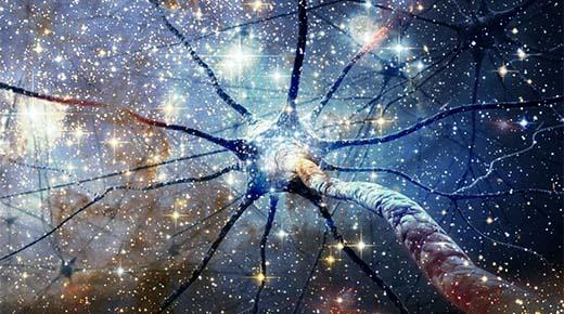 Resultado de imagen de El Universo entero es biológico
