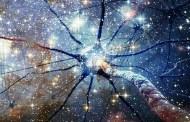 El Universo es una entidad consciente