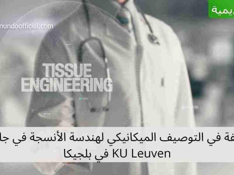 وظيفة في التوصيف الميكانيكي لهندسة الأنسجة في جامعة KU Leuven في بلجيكا