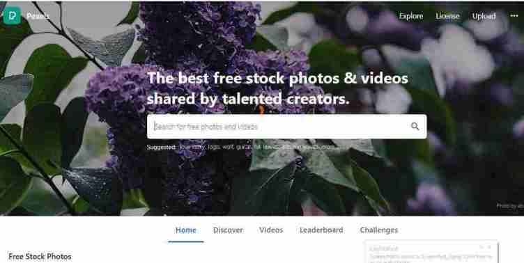 الصفحة الرئيسية في موقع Pexels