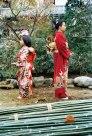 1979 & 2006 (Japón)