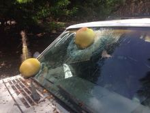 09-cocos