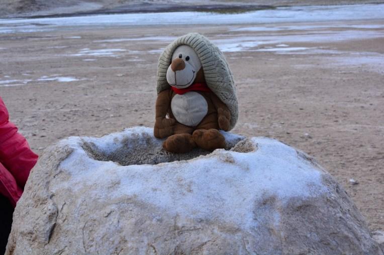 Mucuvinha no Gêiser el Tatio, no Atacama