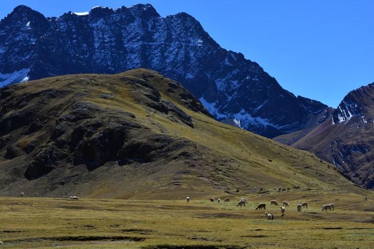Caminho para o Cerro Colorado