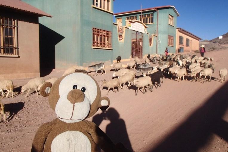 Mucuvinha em Macha durante o festival do Tinku