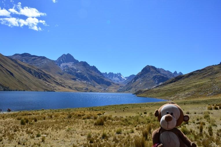 Mucuvinha em uma lagoa do parque Huascaran