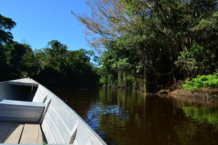 Passeando de barco pelos rios da Amazônia