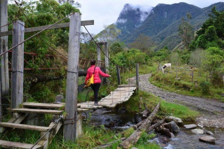 """Atravessando uma """"puente colgante"""" no vale de Cocora"""