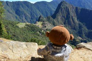 Mucuvinha em Machu Picchu