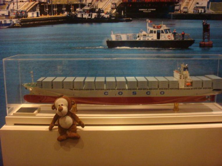Mucuvinha no museu do Canal do Panamá