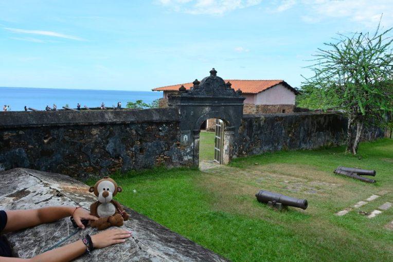 Mucuvinha na Fortaleza de Sant Bárbara - Trujillo, Honduras