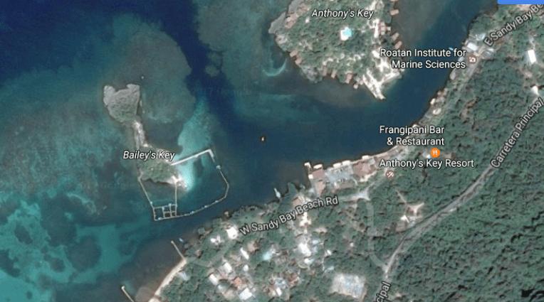 A ilha de Anthony's Key e o local onde os golfinhos são mantidos