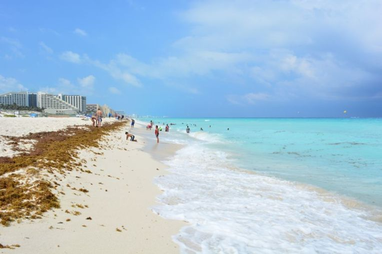 Sargazos em Cancún