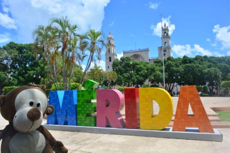 Mucuvinha em Mérida
