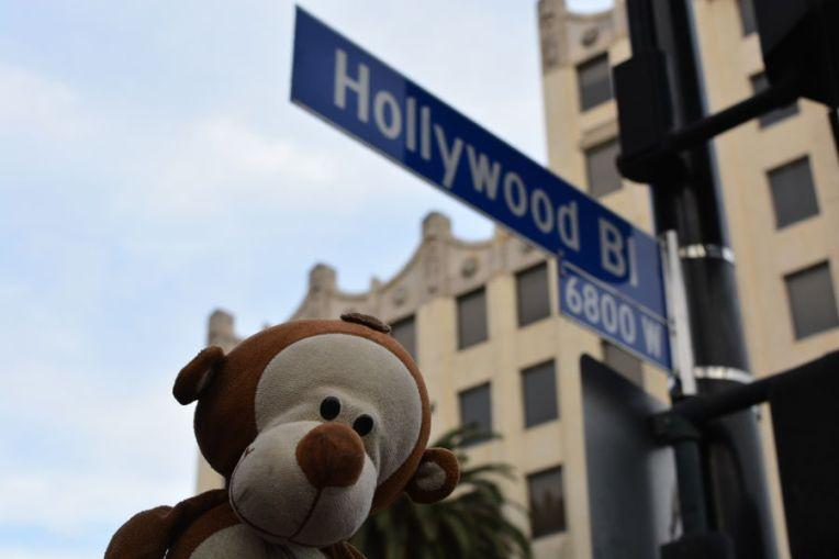 Mucuvinha em Los Angeles