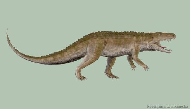 Reinado antes dos dinossauros