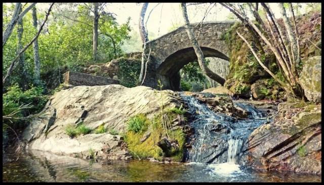 5 lugares imprescindibles de la Naturaleza de Castilla y León