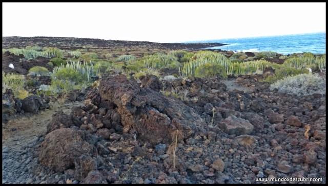 mejores senderos y rutas por Tenerife