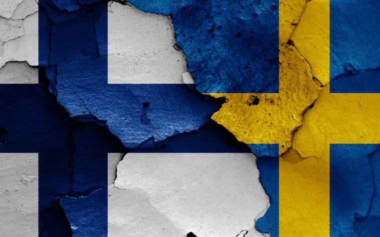 Security policy and the threat debate: A comparison of Sweden and Finland