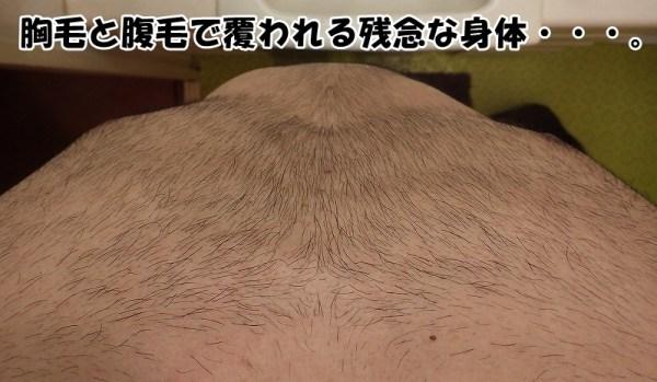 フサフサ胸毛と腹毛で覆われている残念な身体