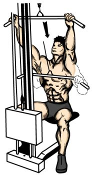 front-wide-grip-lat-pull-down-animation.jpg