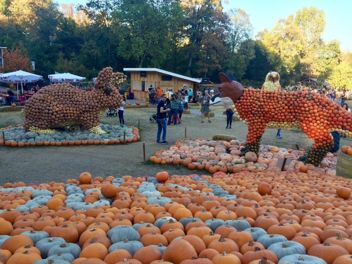 Ludwigsburg Pumpkin Festival_9368