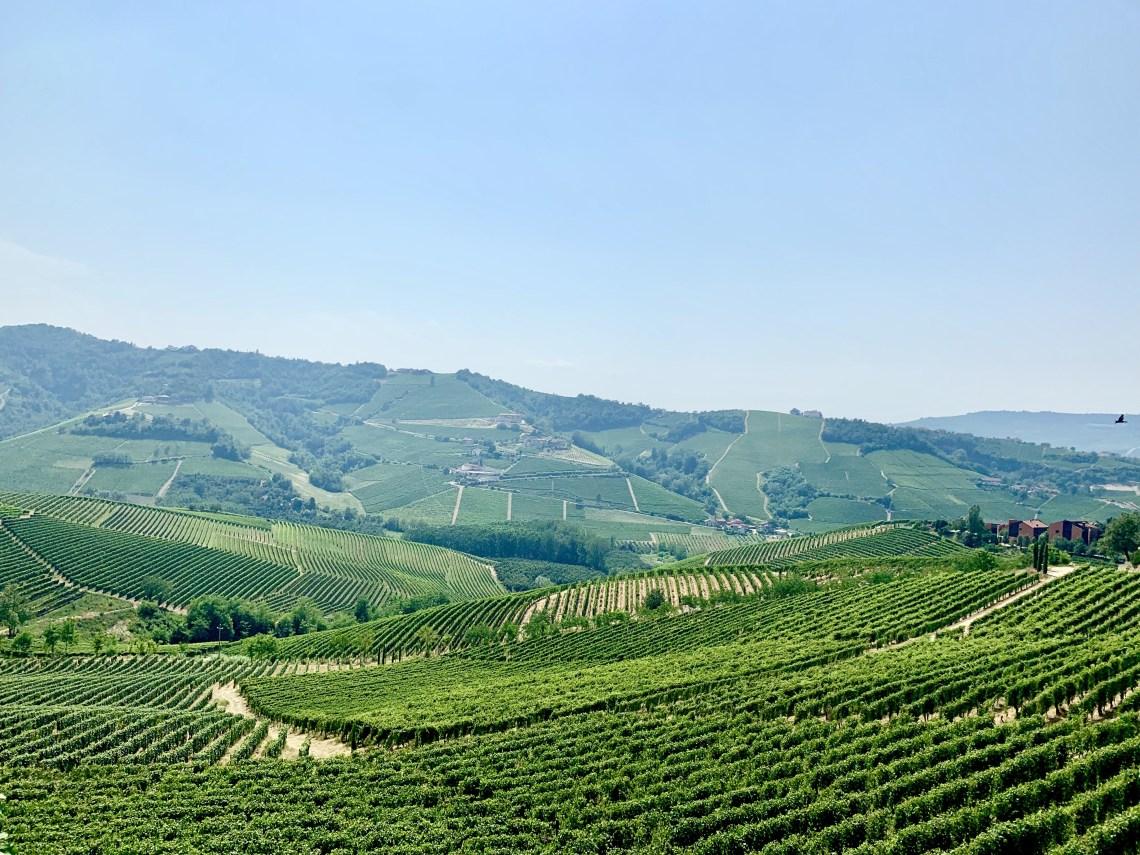 Piedmont Italy Barolo wine region_6503