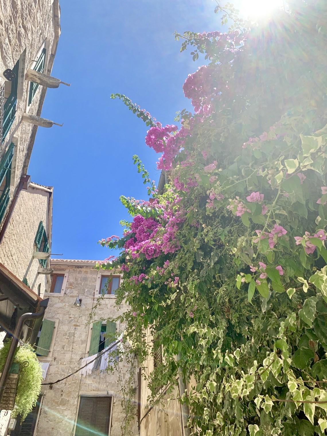 Split Croatia_5916