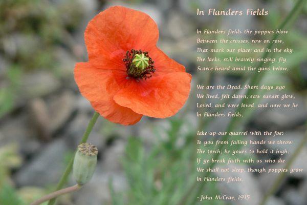 Flanders Field by John McCrae