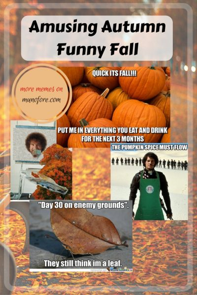 Autumn memes - Celebrate autumn with a smile! Some funny fall (autumn) memes to get in the spirit of the season. humor