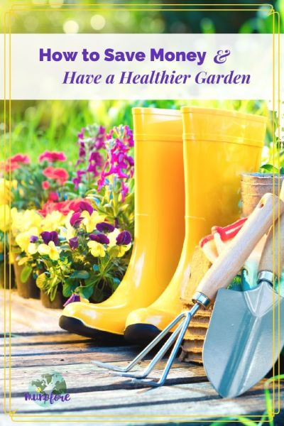 "picture of a garden walkway with garden tools with text overlay "" How to Save Money and Have a Healthier Garden"""