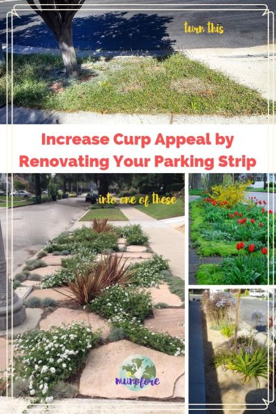 "collage of parking strip photos with text overlay ""Increase Curp Appeal by Renovating Your Parking Strip"""