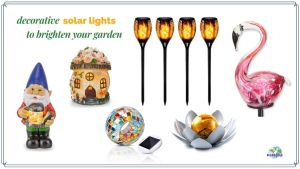 collage of decorative solar lights