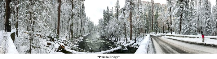 Pohono Bridge