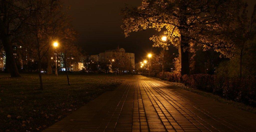 В двух парках Петрозаводска вскоре появится освещение