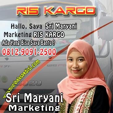 marketing ekspedisi ris kargo
